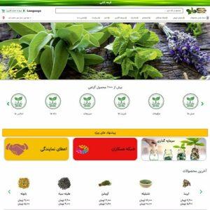 تصویر نمونه کار وب سایت تک دارو